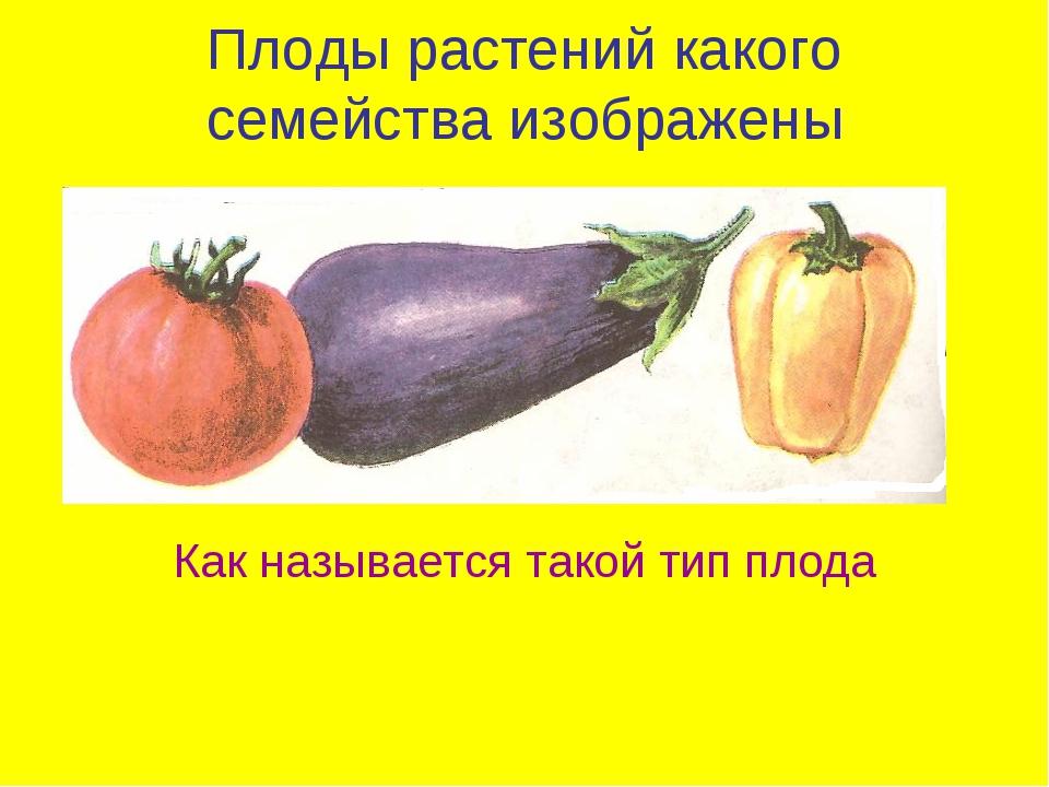 Плоды растений какого семейства изображены Как называется такой тип плода