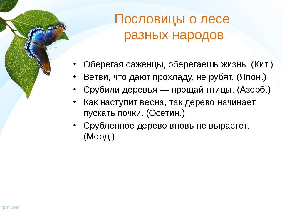 Пословицы о лесе разных народов Оберегая саженцы, оберегаешь жизнь. (Кит.) Ве...