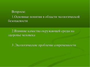 Вопросы: 1.Основные понятия в области экологической безопасности 2.Влияние к