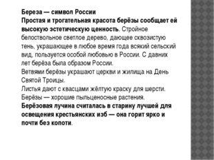 Береза — символ России Простая и трогательная красота берёзы сообщает ей высо