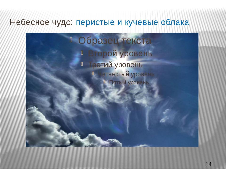 Небесное чудо: перистые и кучевые облака