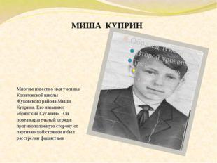 МИША  КУПРИН Многим известно имя ученика Косиловской школы Жуковского района