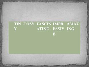 TINY    COSY FASCINATING IMPRESSIVE AMAZING