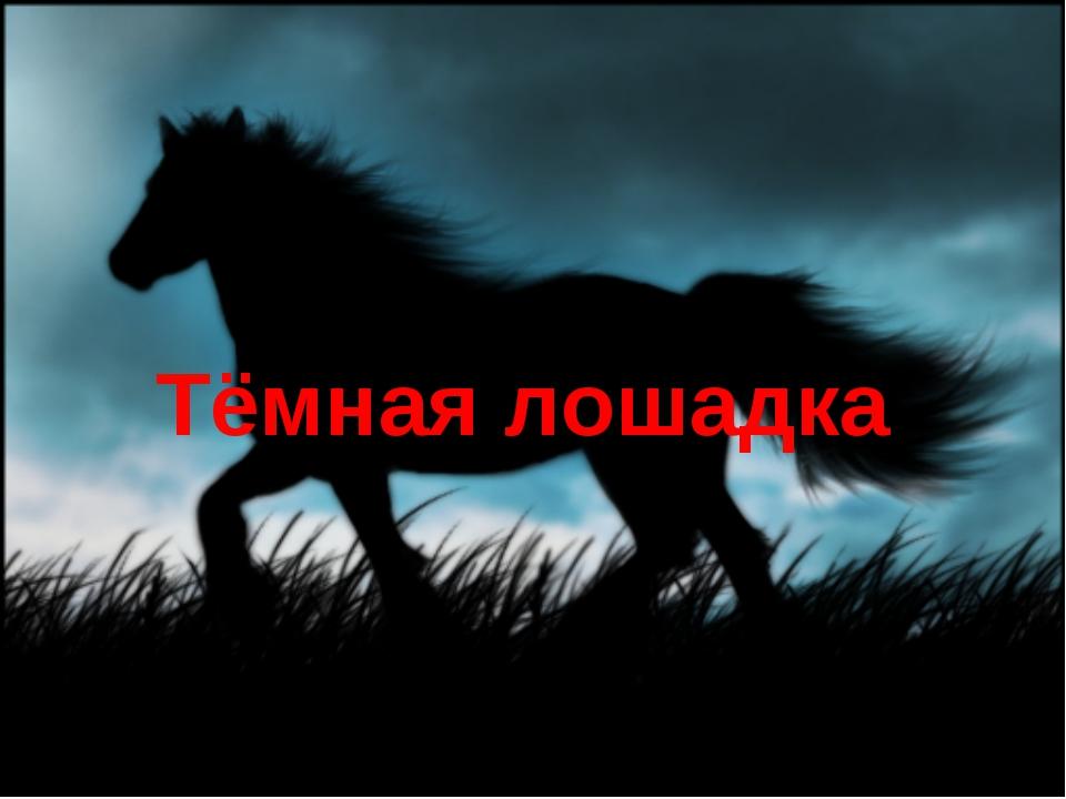 Тёмная лошадка