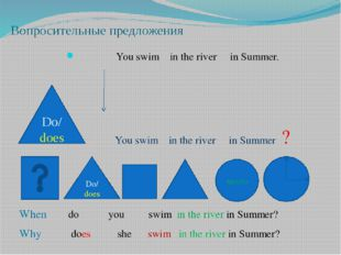 Вопросительные предложения You swim in the river in Summer. You swim in the r