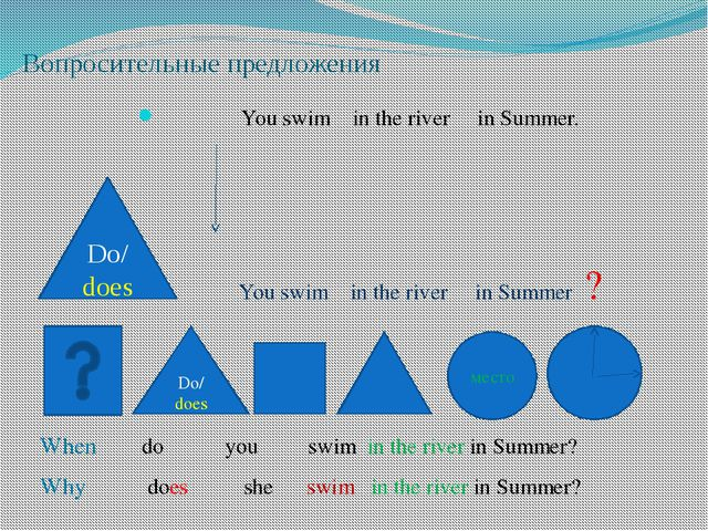 Вопросительные предложения You swim in the river in Summer. You swim in the r...