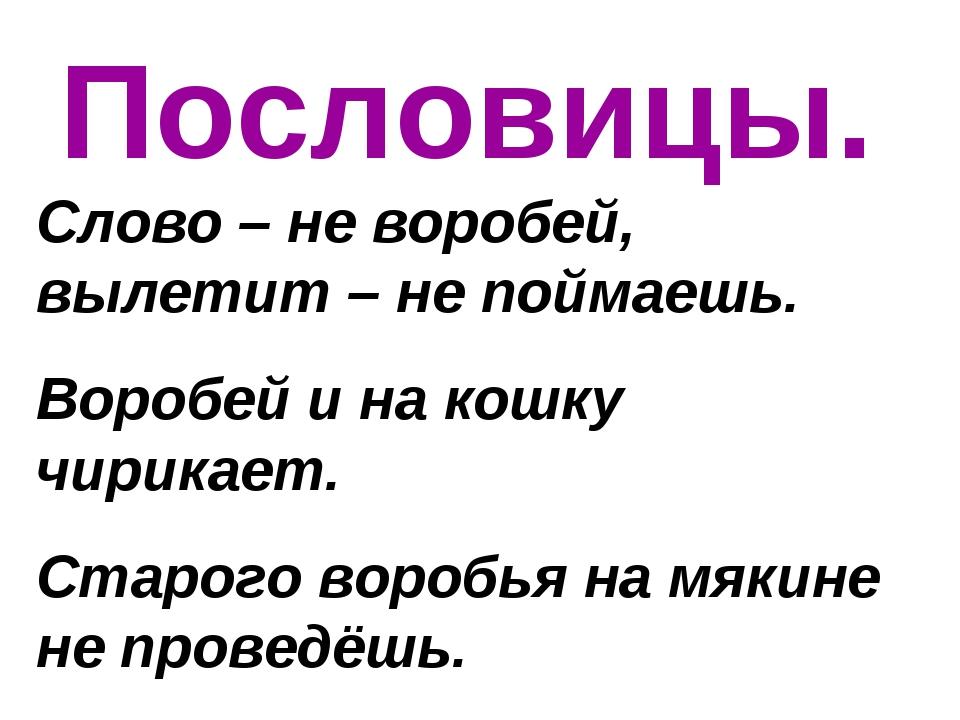 Пословицы. Слово – не воробей, вылетит – не поймаешь. Воробей и на кошку чири...