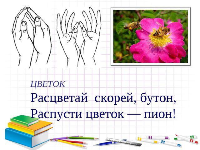 ЦВЕТОК Расцветай скорей, бутон, Распусти цветок — пион!
