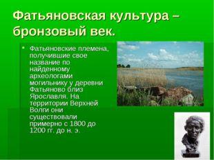 Фатьяновская культура –бронзовый век. Фатьяновские племена, получившие свое н