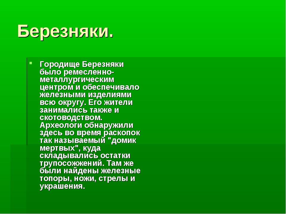 Березняки. Городище Березняки было ремесленно-металлургическим центром и обес...