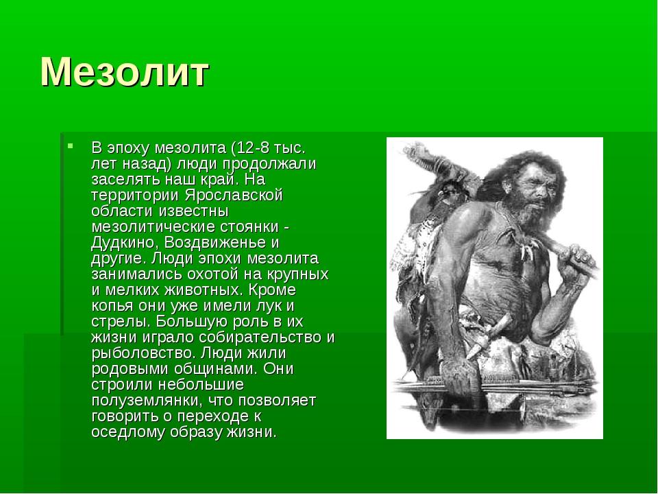 Мезолит В эпоху мезолита (12-8 тыс. лет назад) люди продолжали заселять наш к...