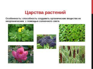 Царства растений Особенность: способность создавать органические вещества из
