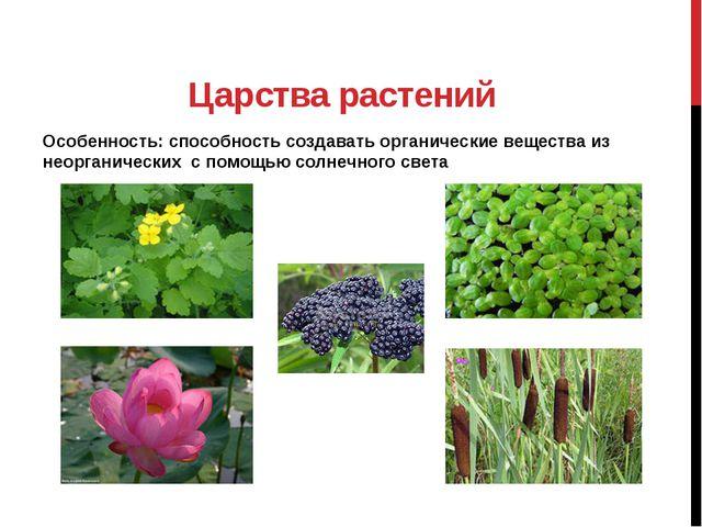 Царства растений Особенность: способность создавать органические вещества из...