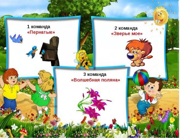 1 команда «Пернатые» 2 команда «Зверье мое» 3 команда «Волшебная поляна»