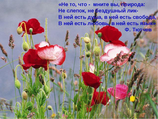 «Не то, что - мните вы, природа: Не слепок, не бездушный лик- В ней есть душа...
