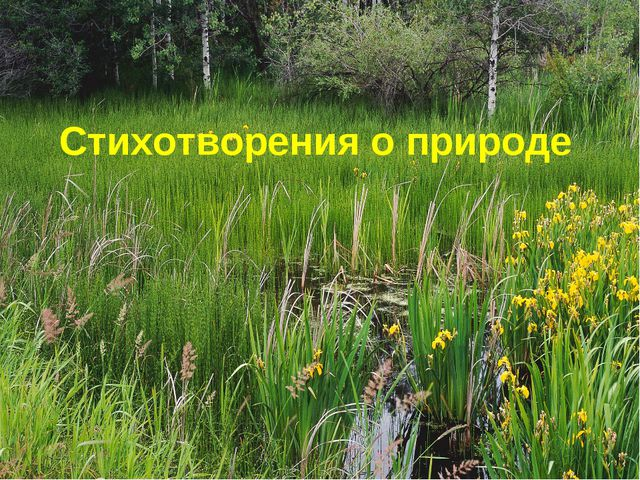Стихотворения о природе