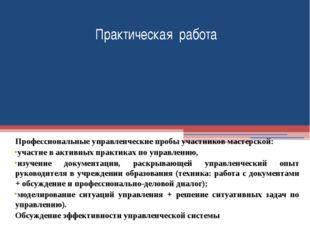 Профессиональные управленческие пробы участников мастерской: участие в активн