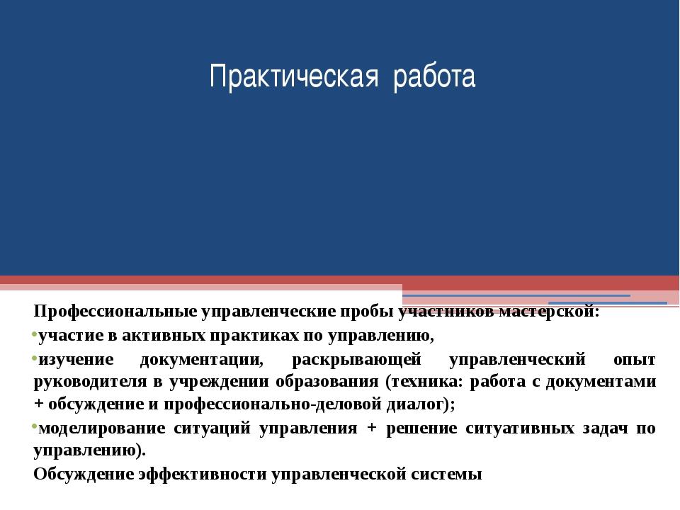Профессиональные управленческие пробы участников мастерской: участие в активн...