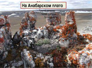 На Анабарском плато