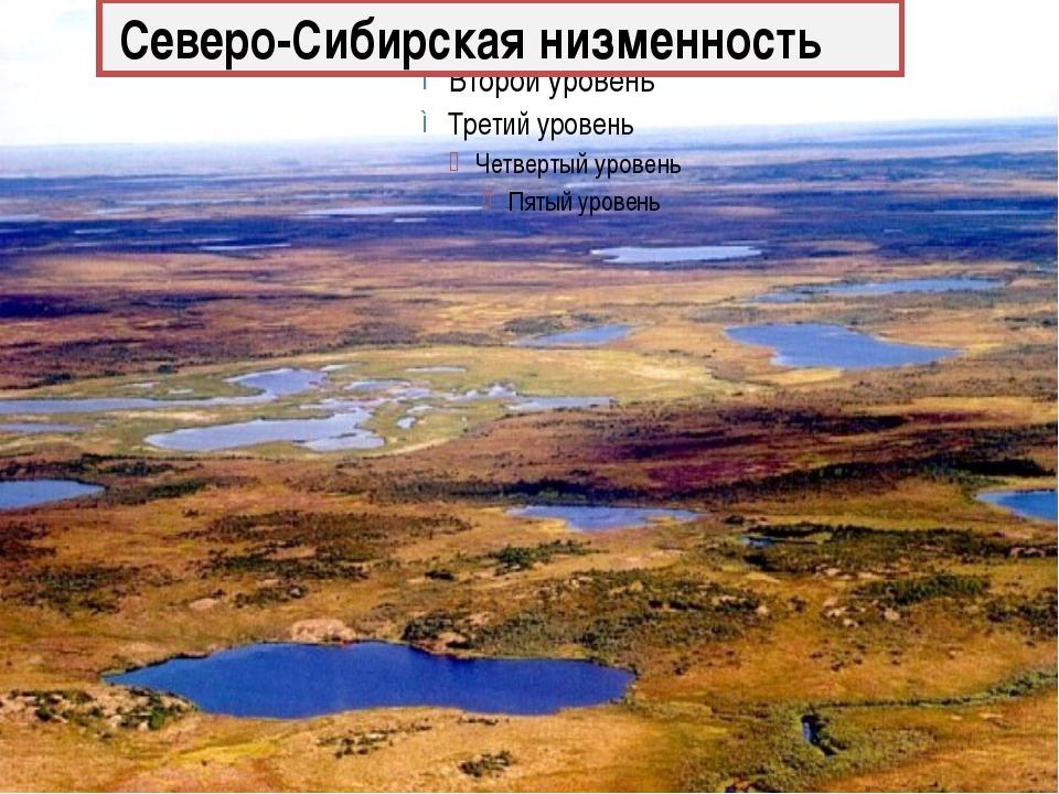 Северо-Сибирская низменность