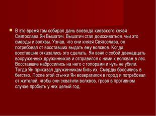 В это время там собирал дань воевода киевского князя Святослава Ян Вышатич. В