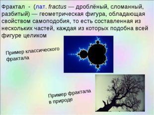 Фрактал - (лат.fractus— дроблёный, сломанный, разбитый)— геометрическая фи