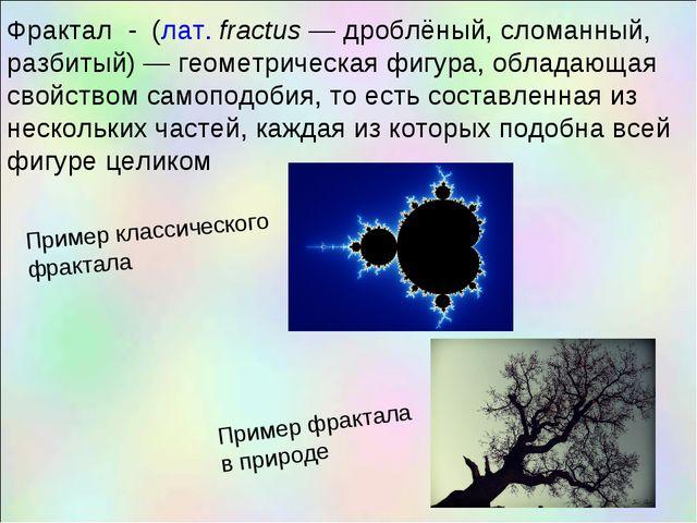 Фрактал - (лат.fractus— дроблёный, сломанный, разбитый)— геометрическая фи...