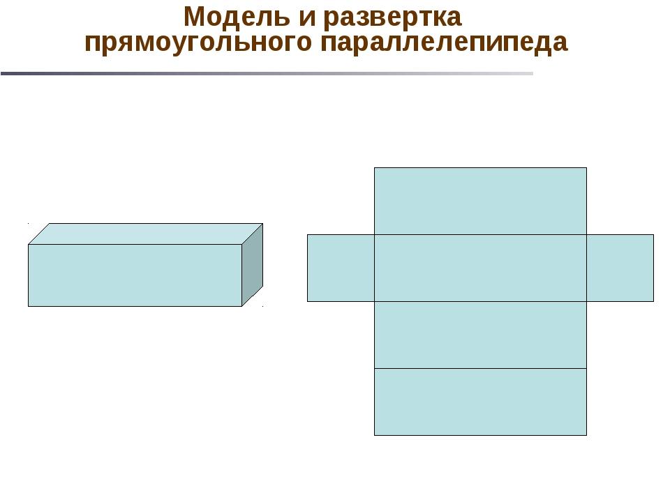 Модель и развертка прямоугольного параллелепипеда