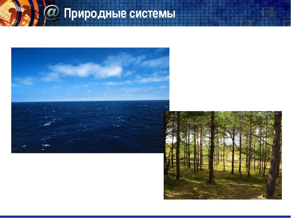 Природные системы