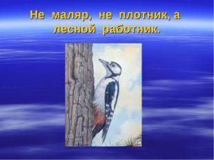 Не маляр, не плотник, а лесной работник.