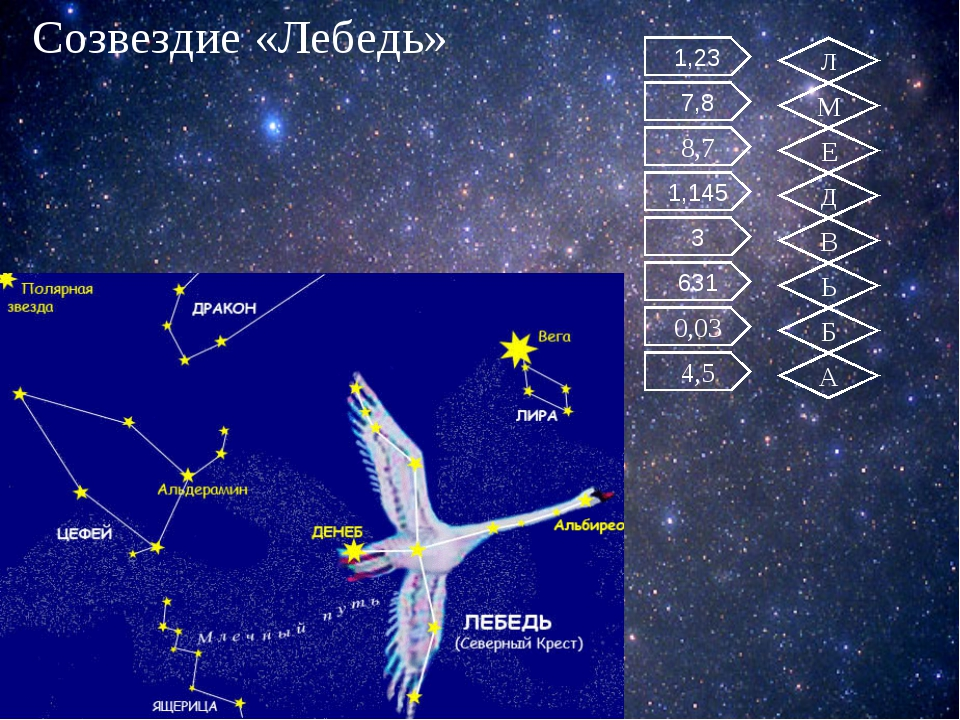 Созвездие «Лебедь» 7,8 8,7 1,145 3 631 0,03 1,23 4,5 Л М Е Д В Ь Б А 112,3 :...
