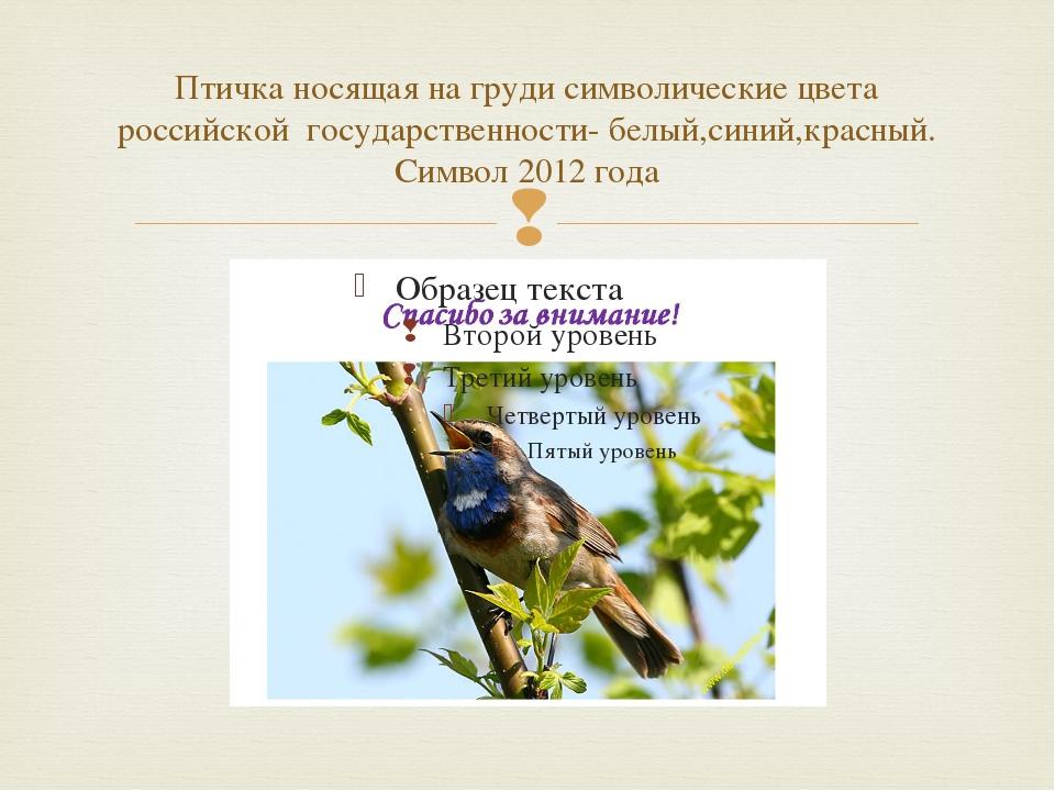 Птичка носящая на груди символические цвета российской государственности- бел...