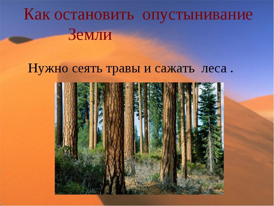 Как остановить опустынивание Земли Нужно сеять травы и сажать леса .