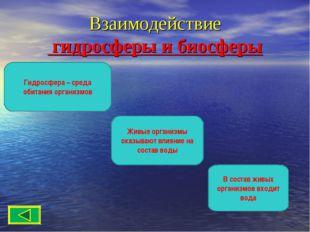 Взаимодействие гидросферы и биосферы В состав живых организмов входит вода Жи