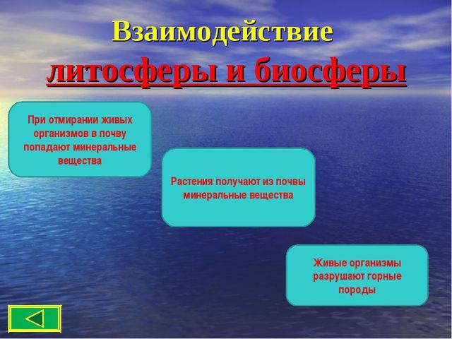 Взаимодействие литосферы и биосферы При отмирании живых организмов в почву по...