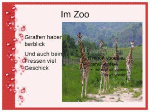 Im Zoo Giraffen haben berblick Und auch beim Fressen viel Geschick