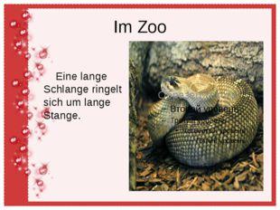 Im Zoo Eine lange Schlange ringelt sich um lange Stange.
