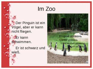 Im Zoo Der Pinguin ist ein Vögel, aber er kann nicht fliegen. Er kann schwimm