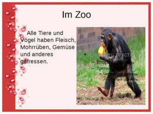 Im Zoo Alle Tiere und Vögel haben Fleisch, Mohrrüben, Gemüse und anderes gefr