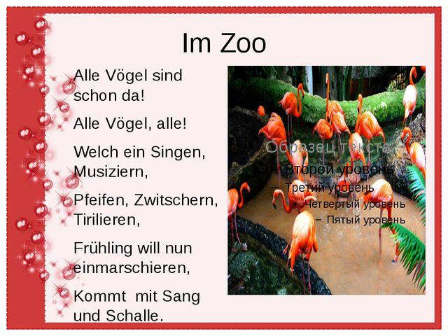 Im Zoo Alle Vögel sind schon da! Alle Vögel, alle! Welch ein Singen, Musizier...