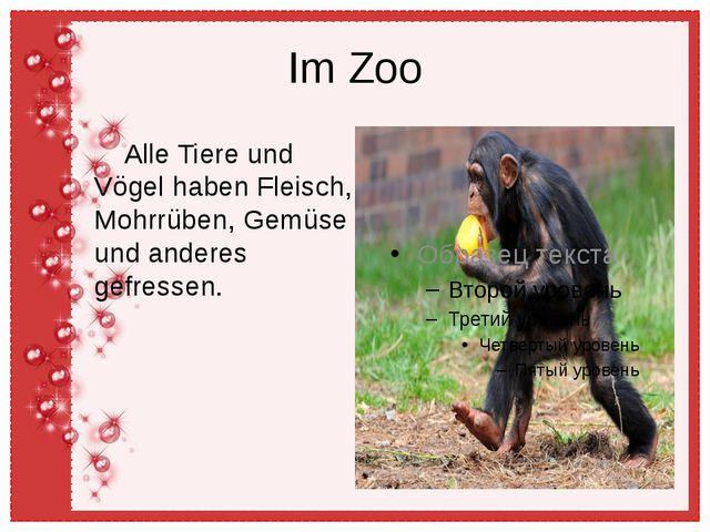 Im Zoo Alle Tiere und Vögel haben Fleisch, Mohrrüben, Gemüse und anderes gefr...