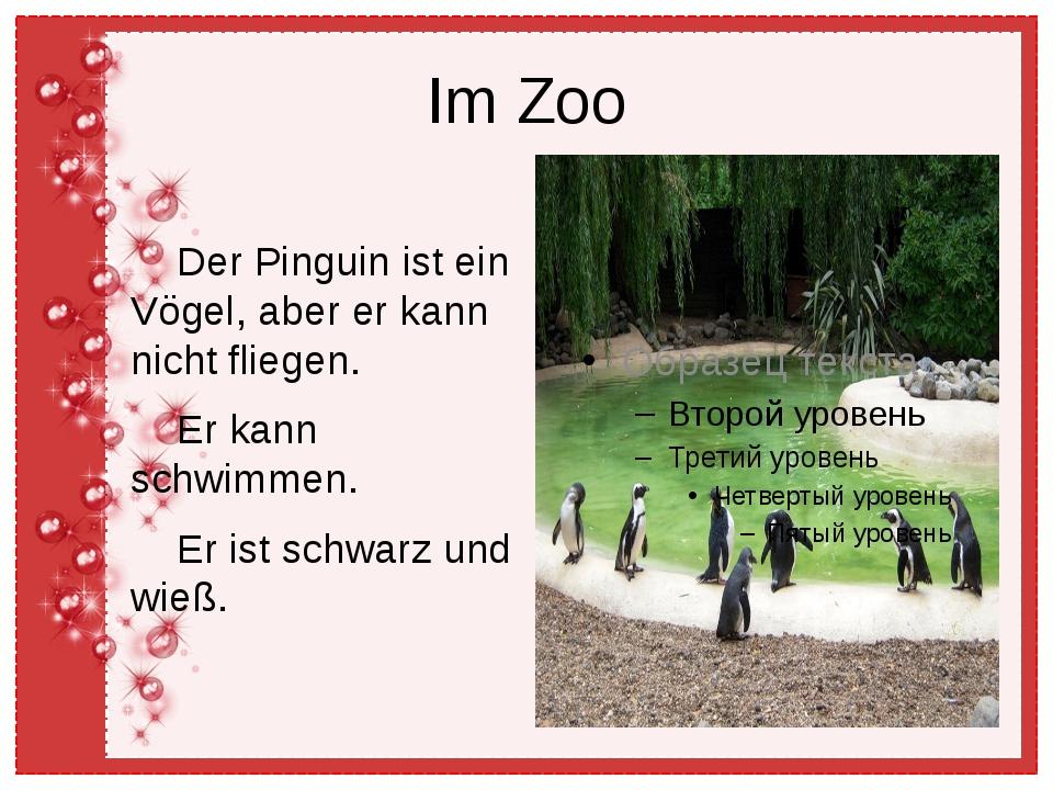 Im Zoo Der Pinguin ist ein Vögel, aber er kann nicht fliegen. Er kann schwimm...