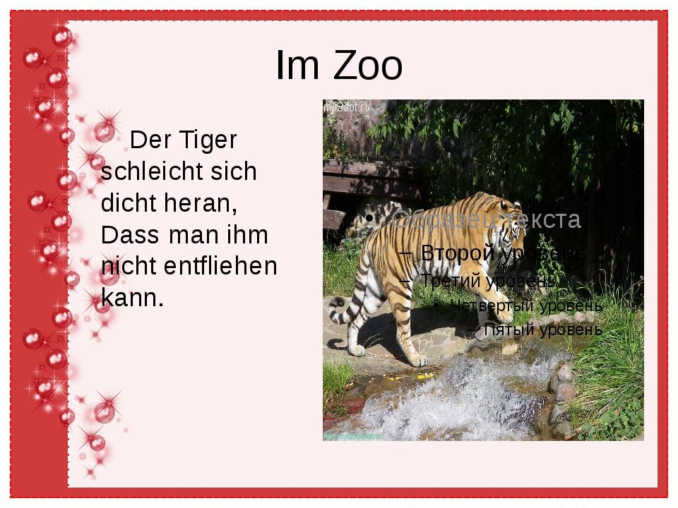 Im Zoo Der Tiger schleicht sich dicht heran, Dass man ihm nicht entfliehen ka...