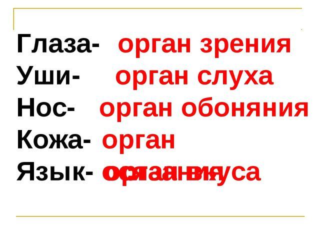 Глаза- Уши- Нос- Кожа- Язык- орган зрения орган слуха орган обоняния орган ос...