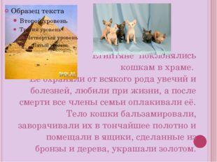 Египтяне поклонялись кошкам в храме. Её охраняли от всякого рода увечий и бол