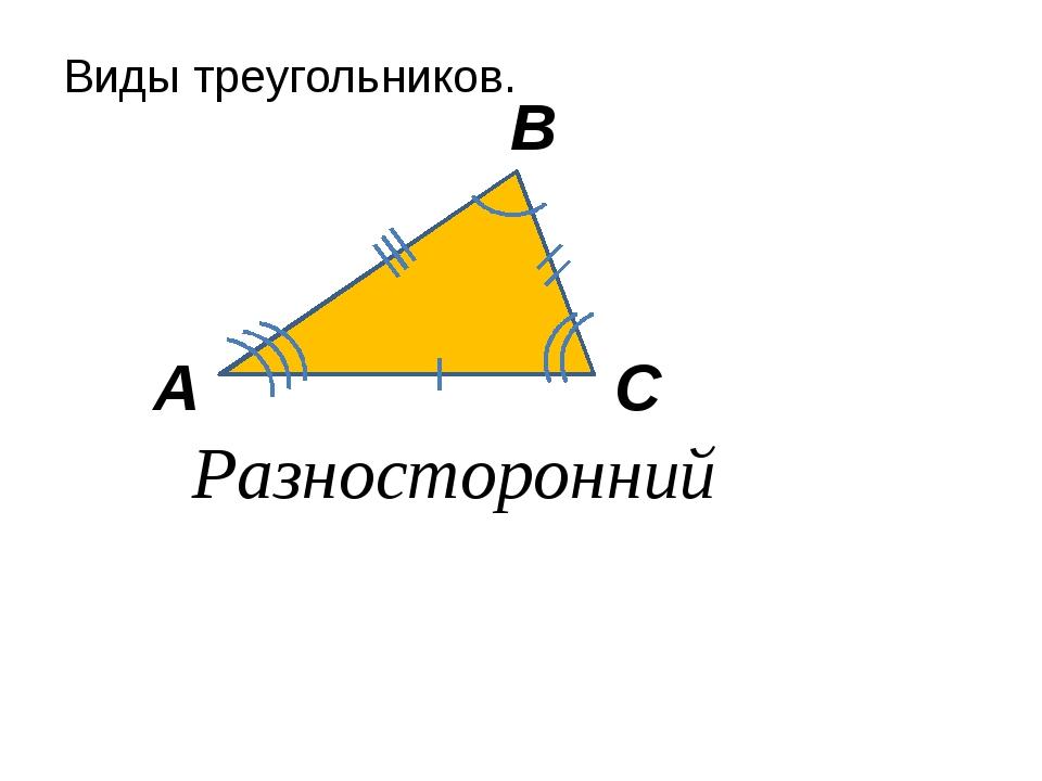 Виды треугольников. А В С