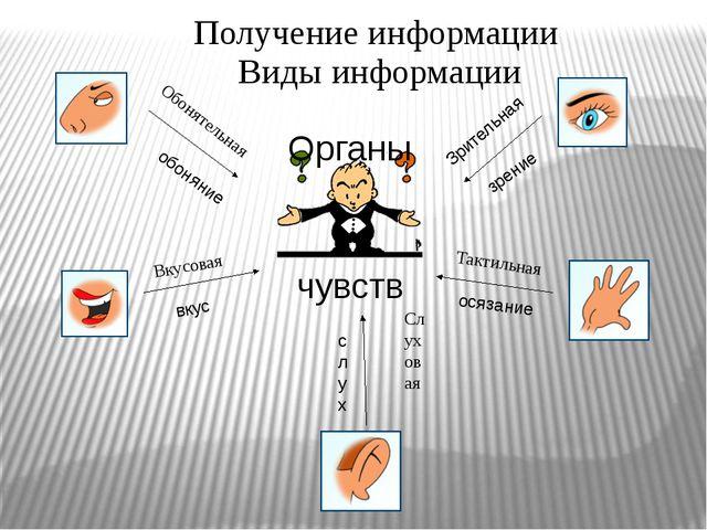 Органы чувств обоняние вкус слух осязание зрение Зрительная Слуховая Тактильн...