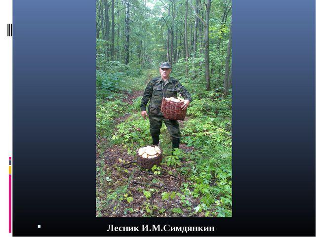 Лесник И.М.Симдянкин
