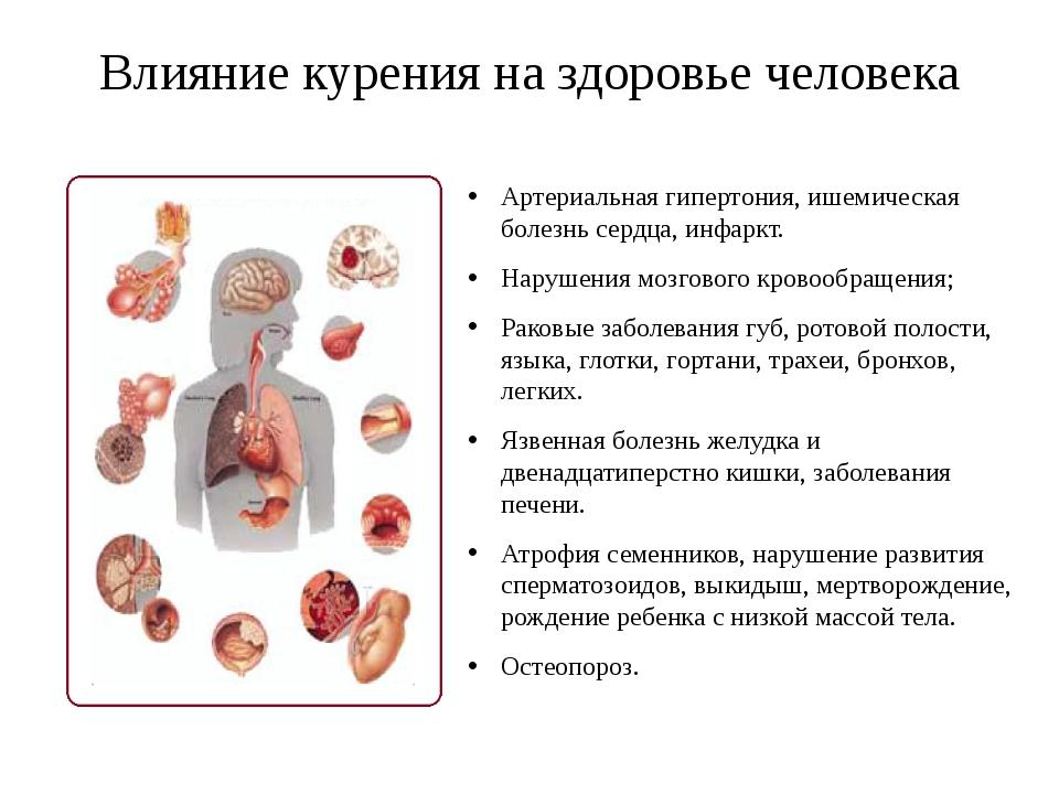 Влияние курения на здоровье человека Артериальная гипертония, ишемическая бол...