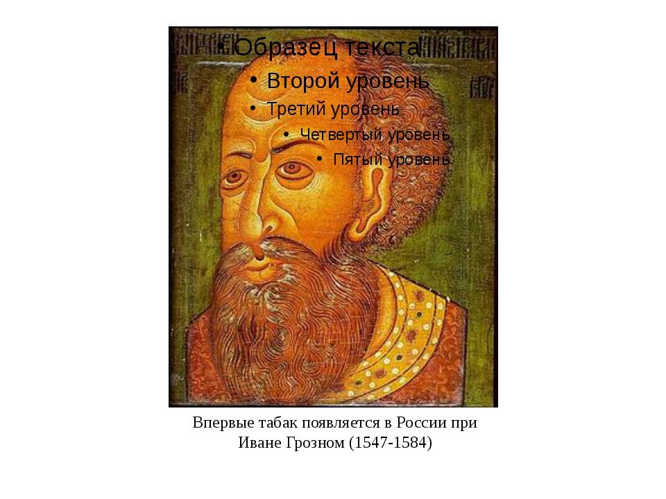 Впервые табак появляется в России при Иване Грозном (1547-1584)